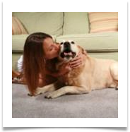 carpet cleaning amarillo - pet stain and odor removal
