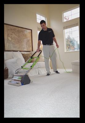 Dry in 20 Carpet Cleaning Sandy Utah