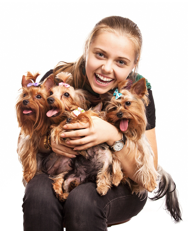 Amarillo Dry Carpet Cleaning - pet friendly training