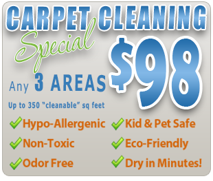 hypo allergenic carpet cleaning amarillo, tx