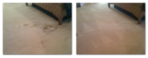 carpet cleaning amarillo - pet stains - before and after