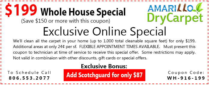 coupon-template-1-$199-whole-house-special