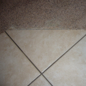 Amarillo dry carpet cleaning - carpet cleaning - dry organic carpet cleaning - transition repair before
