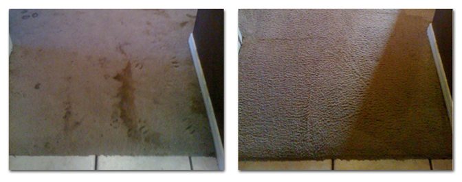 carpet-cleaning-before-after-6