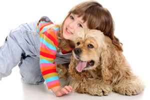 pet stain and odor services