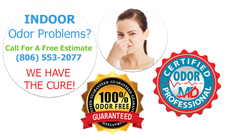 Odor & Sanitizing Services
