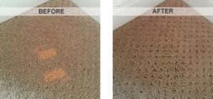 carpet bleach spot repair