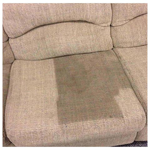 Upholstery Cleaning Amarillo Texas by Amarillo DryCarpet Services